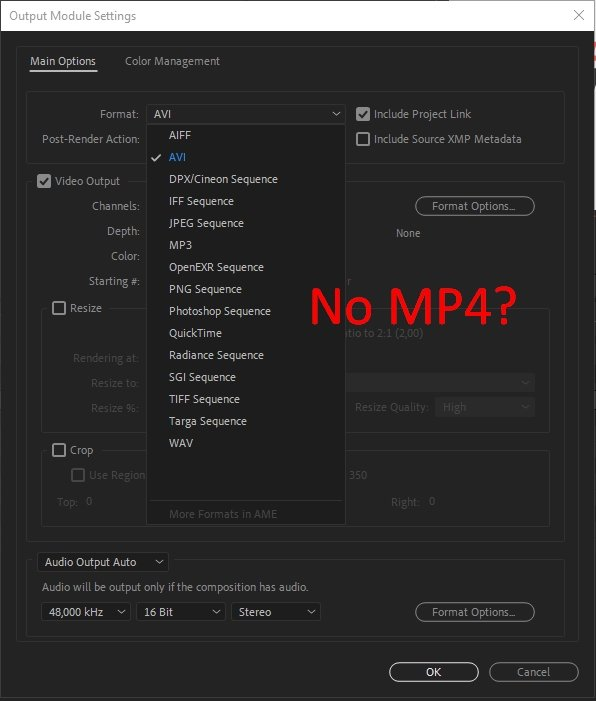 No MP4 option in the File Format Menu